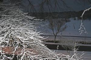 Snow 2010 062+