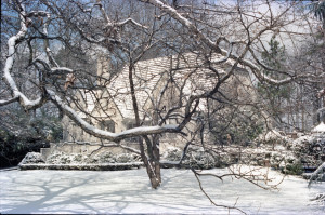 Snow1 March 1980 C-100001