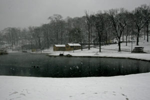 Avondale Park Snow 1