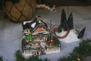 Christmas 2010 031