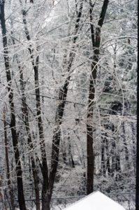Snow 1982  2 C-134001