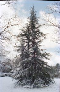 Snow March 1980 C-100001
